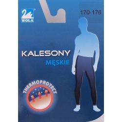 Kalesony getrowe
